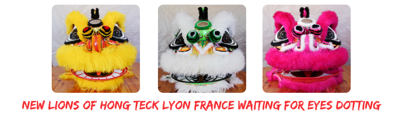 NEW LIONS OF HONG TECK LYON FRANCE WAITING FOR EYES DOTTING